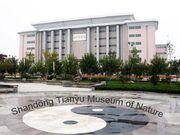 Tianyu museum1