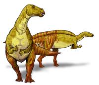 Nanyangosaurus dinosaur