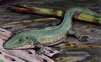 Cochleosaurus