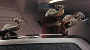 Sénateur Ithorien