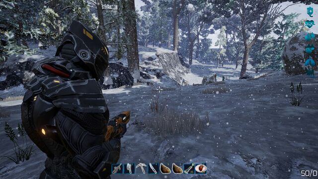 File:Fragmented snow biome2.jpg