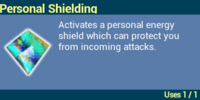 Personal Shielding