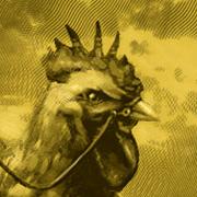File:Chicken180.jpg