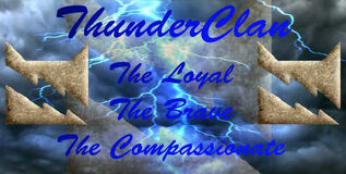 Warrior Cats of Thunderclan ON WIZARD101