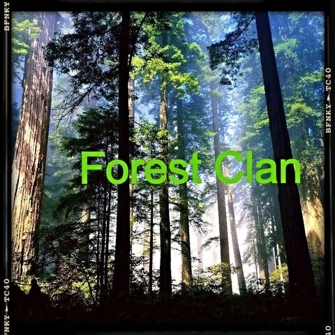 File:Forest clan flag version 3.jpg