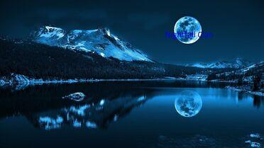 Moonlight-night