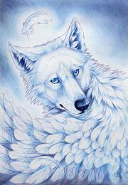 Angel by wolf minori-d3kizo3