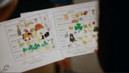 Adorable report cards