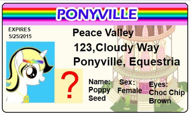 File:Poppyidcard.jpg