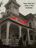 Mr Hush Teaser poster