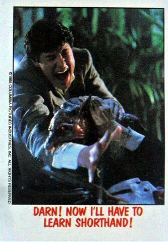 File:Topps Fright Flicks 10 Fright Night William Ragsdale.JPG