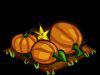 File:Pumpkin fruit.png