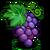 Grape-icon