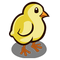 Chicken Baby-icon