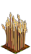 File:Wheat fruit.png