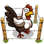 File:Share Chicken Ranching.png