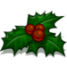 Holly Wreath-icon