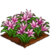 Pink Lily-icon