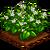 Stevia-icon