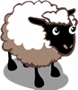 Sheep Ado-icon