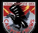 Canyon Crows