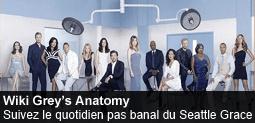 Fichier:Spotlight-greysanatomy-20130701-255-fr.png