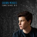 Shawn-Mendes Something-BigV2-1414607627