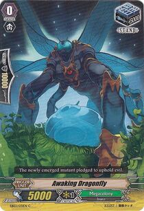 Dragonflight (FMA)