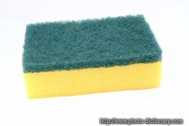 File:6916cleaning sponge.jpg