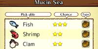 Mucin Sea