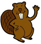 Alan beaver