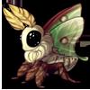 1637-swallowtail-moth