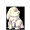 1447-white-snowbunny