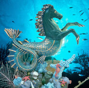 Seahorse by OZ-best