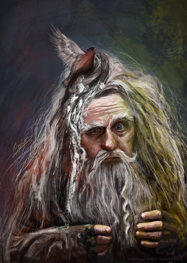 The Brown Wizard