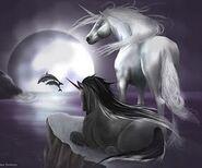 Beautiful-Unicorns-unicorns-24601929-240-200