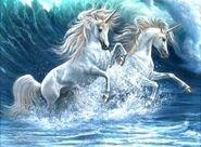 Unicorns-in-water