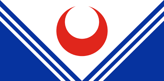 File:Paki Flag.png
