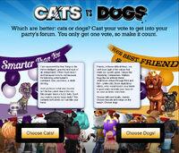 2k10 catsvsdogs MainPage