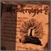 Kategória:Könyvek