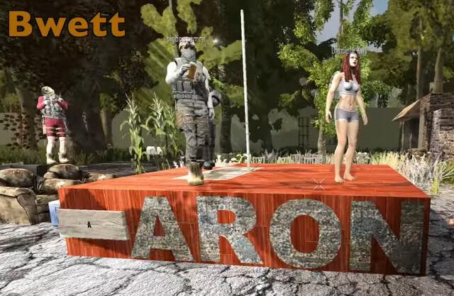 File:Aaronpole 2.jpg