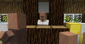 Minecraft-testificate-judge