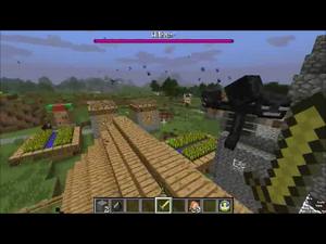 Wither and Bertie Running