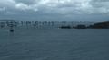 605 Iron Fleet.png