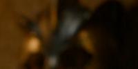 Boros Blount
