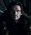 Lord Robb in Winterfell.png