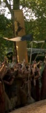 File:Baratheon tourney.jpg