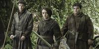 シーズン3第2話「三つ目の鴉」
