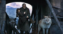 Bran, Hodor, Summer and Shaggydog.jpg