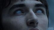 705 Bran